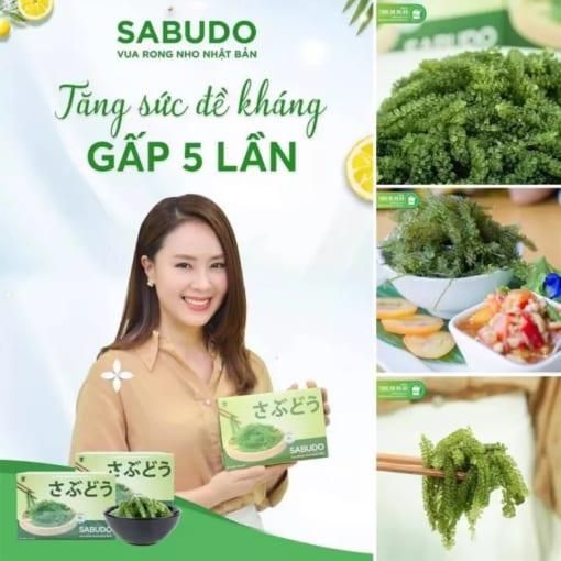 Rong nho Sabudo